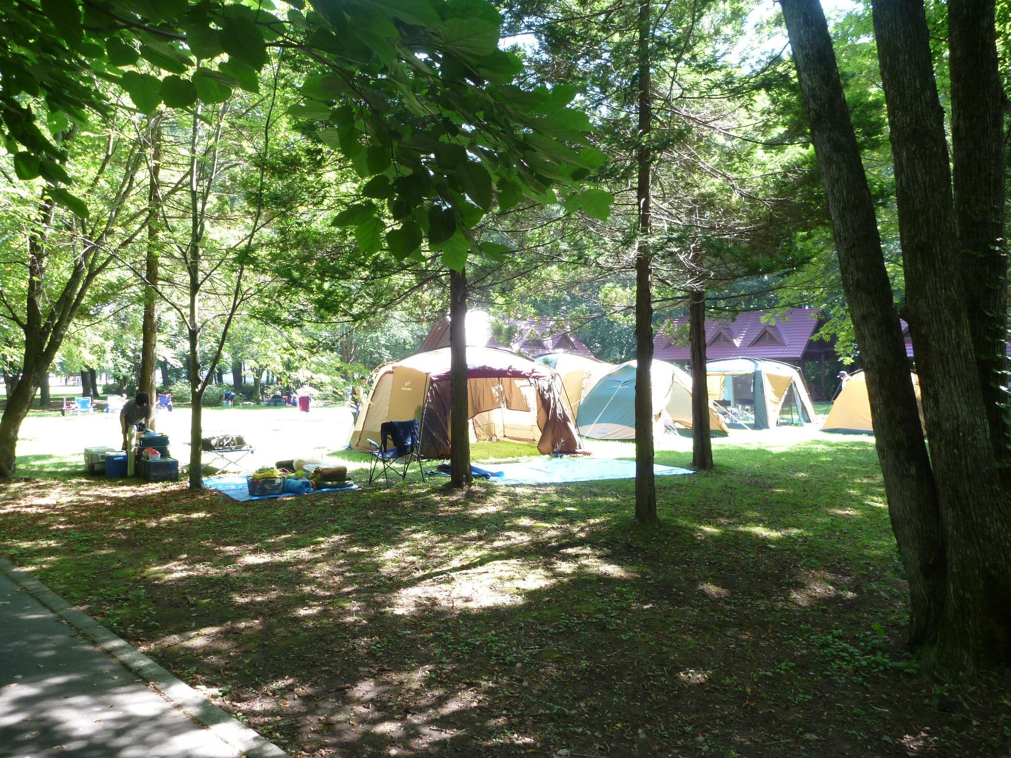 鹿公園キャンプ場2